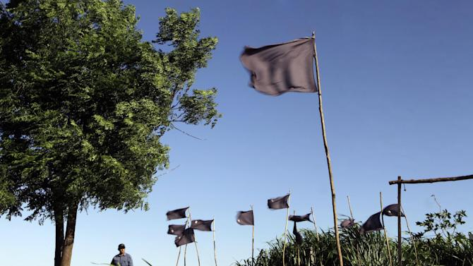 """In this Nov. 13, 2012 photo, a farmer walks behind black flags representing 11 landless farmers who were killed during clashes with police in the Yvy Pyta settlement near Curuguaty, Paraguay. The """"Massacre of Curuguaty"""" on June 15 occurred when negotiations between farmers occupying a rich politician's land ended with a barrage of bullets that killed 11 farmers and 6 police officers. (AP Photo/Jorge Saenz)"""