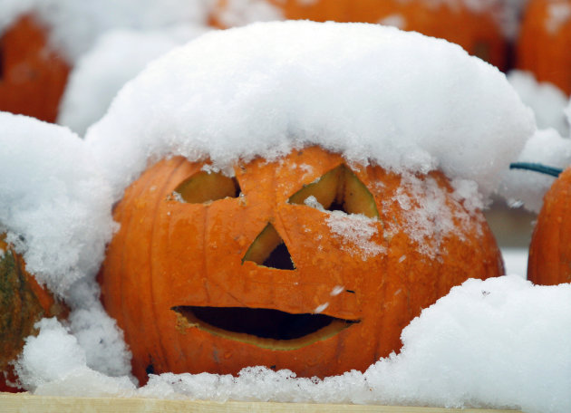 A jack-o'-lantern is covered with snow during a storm, Sunday Oct. 30, 2011, in Freeport, Maine. (AP Photo/Robert F. Bukaty)