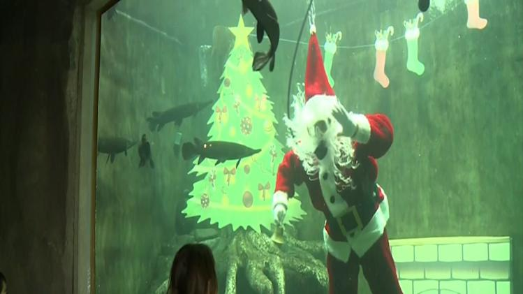Raw: Scuba Diving Santa in Mexico