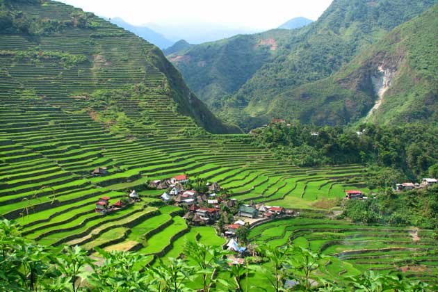 Hooray for heritage sites - Rice terraces