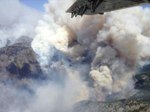 Smoke rises from the TePee Springs fire in the Payette National Forest near Riggins, Idaho
