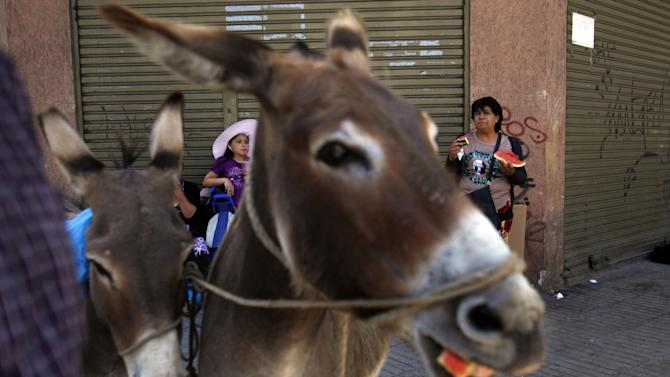 In this Dec. 13, 2014 photo, people stop for a snack where brothers Marco and Ricardo Alegria sell their donkeys' milk on the sidewalk in Santiago, Chile. The Alegrias sell shot-sized cups of the milk for about $2. A half-liter, the most they say a donkey produces in a day, goes for about $20. (AP Photo/Luis Hidalgo)