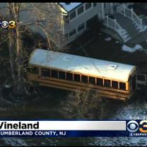 School Bus Crashes Into Tree In Cumberland County