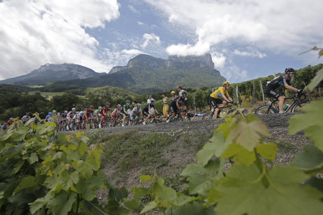 The pack with Bradley Wiggins of Britain, wearing the overall leader's yellow jersey, passes vineyards as it climbs towards Granier pass during the 12th stage of the Tour de France cycling race over 2