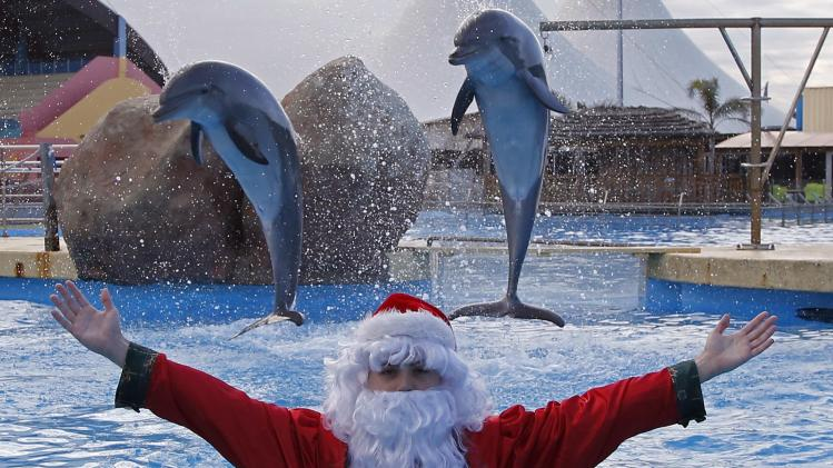 Dolphins jump behind a man dressed as Santa Claus at the Marineland Aquatic Park in Antibes