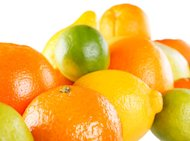 http://media.zenfs.com/en-US/blogs/partner/4674citrus_collection.jpg
