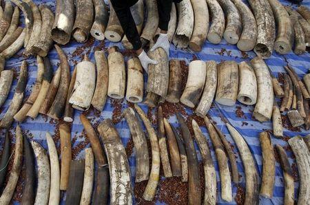 Tanzania charges Chinese 'Ivory Queen' smuggling suspect
