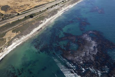 The last oil spill in Santa Barbara helped birth environmentalism. What will this one do?