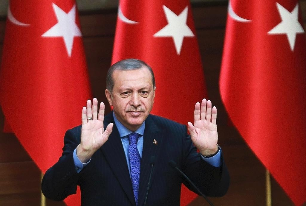 New Erdogan powers 'huge threat' to democracy, rights group warns