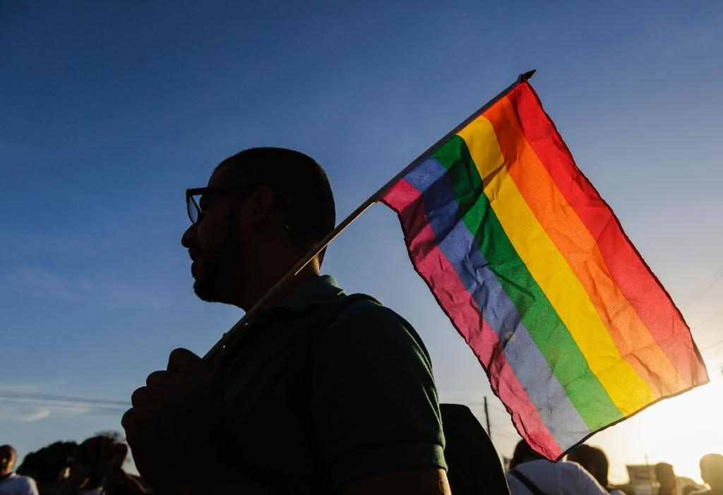 Gay rights progress faces Europe backlash: activists