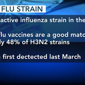 Effectiveness of flu vaccine questioned as outbreak spreads