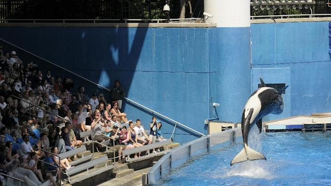 FILE - In this Monday, March 7, 2011, file photo, park guests watch as a killer whale flips out of the water at SeaWorld Orlando's Shamu Stadium in Orlando, Fla. SeaWorld Entertainment Inc. on Thursday, Dec. 27, 2012, filed for an initial public offering of stockthat could raise $100 million.(AP Photo/Phelan M. Ebenhack, File)