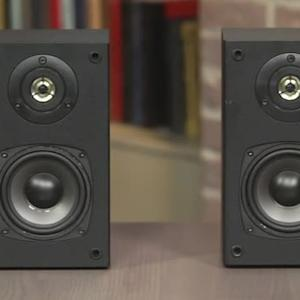 Dayton Audio  B452 speaker cheap not nasty