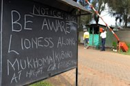 "This notice outside the main entrance of residential houses in Nairobi's Karen suburb, was put up after a lioness was spotted near the area. Wildlife officials have issued warnings to residents near the park to call them ""should they see another lion in their area as it is possible more than one lion had strayed from the park."" (AFP Photo/Simon Maina)"