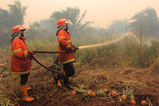 Firefighters spray water to extinguish a fire which burned a plantation in Rokan Hilir district in Riau province