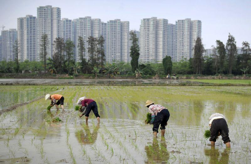 Cautious China banks could undermine Beijing's property stimulus efforts
