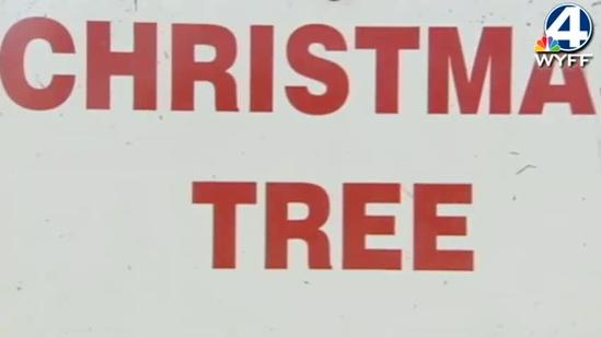 Christmas Trees Turn Into Fish Attractors