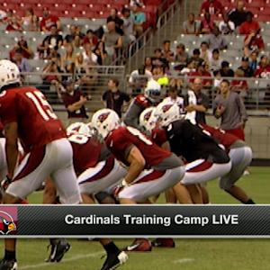 Can the Arizona Cardinals contend?