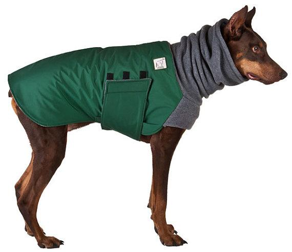 Doberman Pincher Winter Dog Coat
