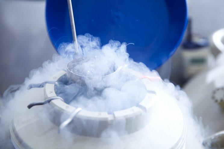 Study Finds Most Women Who Medically Freeze Eggs Never Use Them