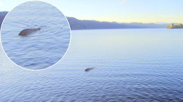 Scottish Sailor Claims To Have Best Picture Yet Of Loch Ness Monster (ABC News)