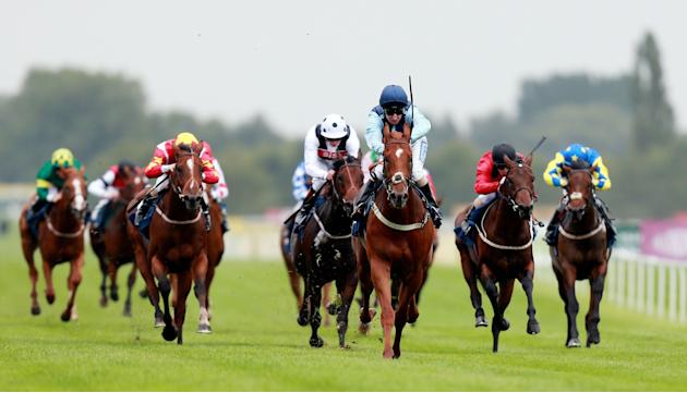 Horse Racing - Racing for Racegoers: Dubai Duty Free Weekend - Newbury Racecourse
