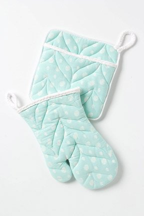 Aqua Potholders