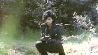 Purple Rain (Trailer 1)