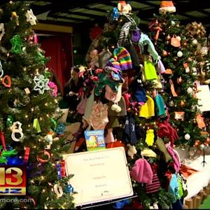 Festival Of Trees Holiday Tradition Is Back In Town