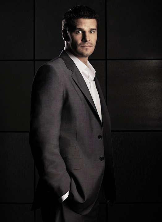 David Boreanaz stars as FBI Special Agent Seeley Booth in Bones on FOX. 