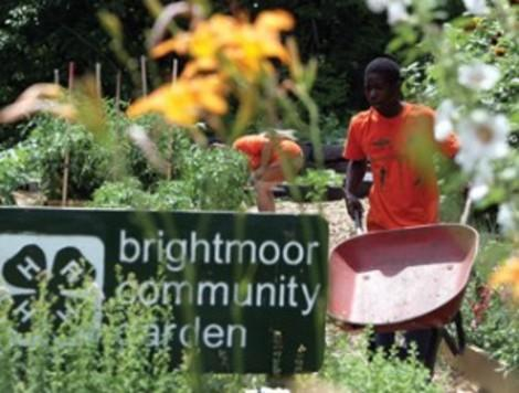 Renewal and Community in Detroit's Brightmoor Neighborhood