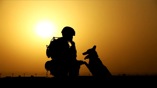 This 2012 publicity photo provided by Animal Planet shows a soldier and military working dog, in Afghanistan. Animal Planet embedded four camera crews with front line troops for six weeks to create a television special called &quot;Glory Hounds,&quot; where each crew was assigned to a handler and his dog and the show set out to prove that dogs were more than military &quot;tools.&quot; Glory Hounds&quot; airs Thursday, Feb. 21, 2013 at 8 p.m. ET/PT and repeats on Feb. 24 at 9 a.m. ET/PT. (AP Photo/Animal Planet)