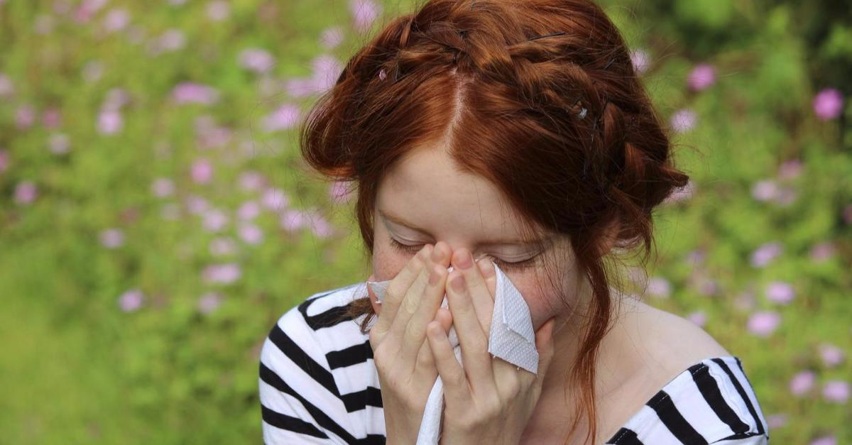 Clear-Cut Signs You Have Seasonal Allergies