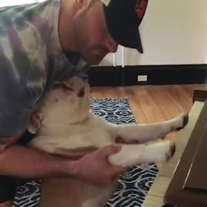 NFL star teaches dog to play piano