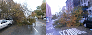 Trees fallen in Harlem at Hurricane Sandy