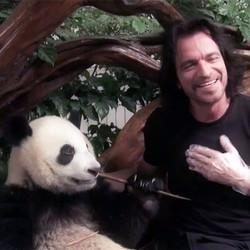 'I'm Probably The Only Human Being On The Planet That... Has A Panda'