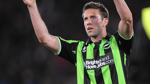 Brighton and Hove Albion's Matthew Upson (PA)