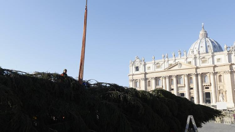 Workers erect Christmas tree in St. Peter's Square at the Vatican