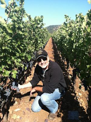 This undated publicity photo provided by courtesy of Covenant Wines shows winemaker, Jeff Morgan, sampling Solomon grapes in the Covenant Wines vineyard in Napa Valley, Calif. (AP Photo/Courtesy Covenant Wines)