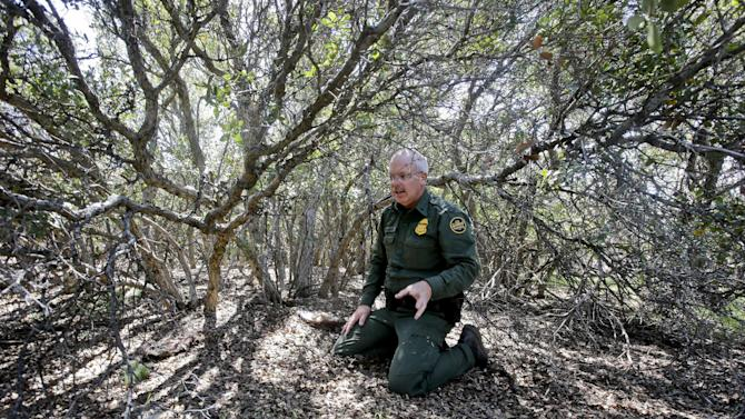 """In this Monday, March 25, 2013 photo, Border Patrol agent Richard Gordon, a 23-year veteran of the agency, kneels in an oak grove where he has tracked illegal immigrants to this staging location after entering the United States in the Boulevard area east of San Diego in Boulevard, Calif. For the past 16 years, Gordon has been one of the top """"sign-cutters"""" or trackers in the Border Patrol. (AP Photo/Lenny Ignelzi)"""