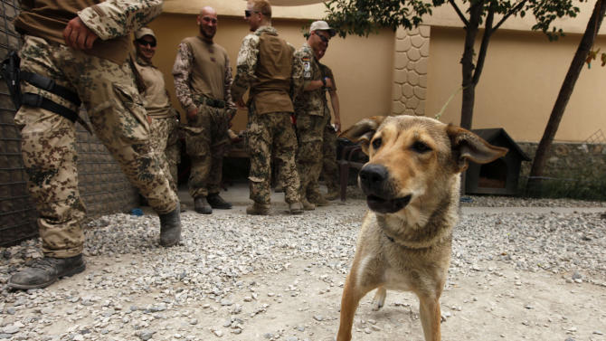 German Bundeswehr army soldiers gather behind a dog called Gina in their recreation area inside the German army camp in Toloqan