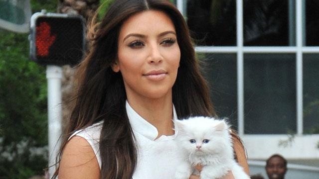 Kim K's Heart 'Broken' After Cat Dies