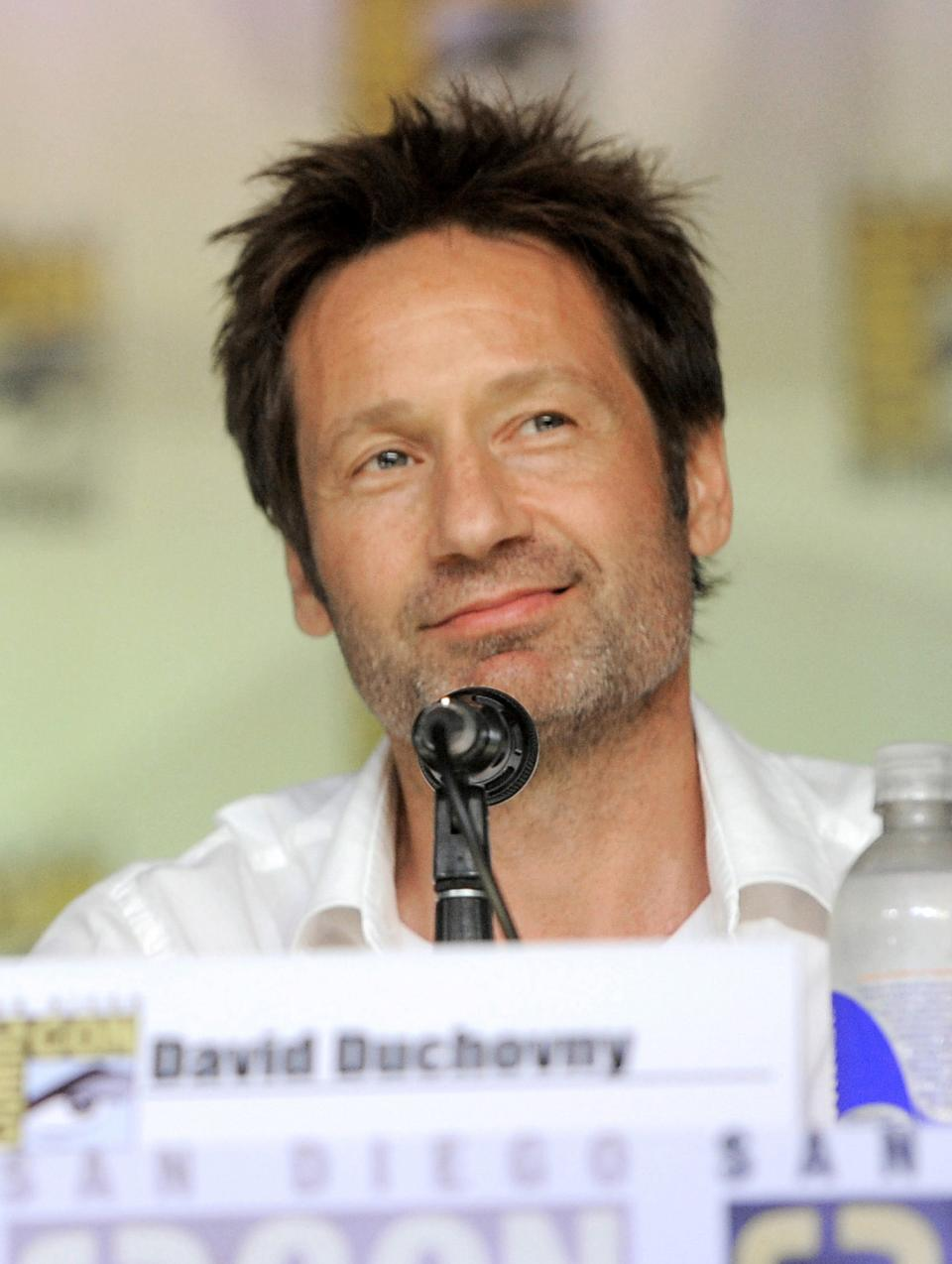 "David Duchovny attends the ""The X Files"" 20th Anniversary panel on Day 2 of Comic-Con International on Thursday, July 18, 2013 in San Diego, Calif. (Photo by Chris Pizzello/Invision/AP)"