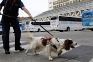 File picture shows a police sniffer dog in central London. British police on Thursday charged five people with terrorism offences following their arrest in operations carried out earlier this month