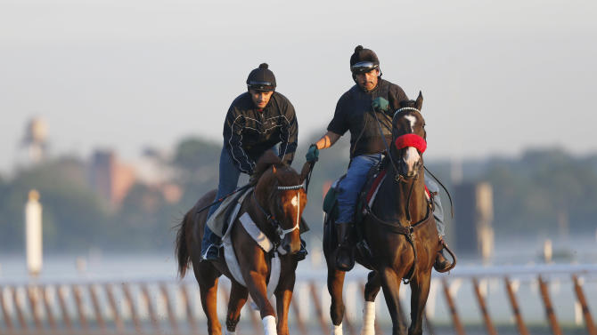 I'll Have Another, left, with exercise rider Jonny Garcia, accompanied by stablemate Lava Man, trains at Belmont Park, Friday, June 8, 2012 in Elmont, N.Y. The Triple Crown hopeful runs Saturday in the Belmont Stakes. (AP Photo/Mark Lennihan)