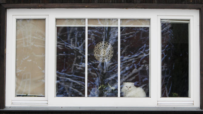 In this Feb. 9, 2013 photo a cat peers from a window of a Finnish-built wooden house in Warsaw, Poland. Such homes, erected as temporary housing in the destroyed capital just after World War II, have dwindled in number over the years from 90 to about 25. The surviving structures have recently become a point of contention between their inhabitants and a city government keen on tearing them down to make way for new developments. Now, however, it seems about five might be saved due to the intervention of a new Finnish ambassador. (AP Photo/Czarek Sokolowski)