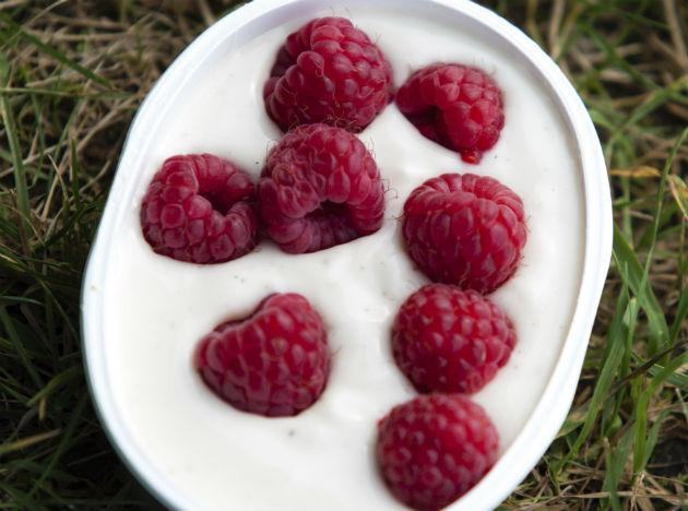 yogurt for immunity