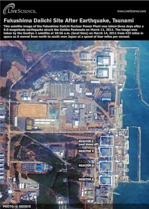 Fukushima Radiation Leak: 5 Things You Should Know