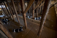 Interior view of the full scale replica of Noah&#39;s Ark with life-size replica&#39;s of animals which has opened its doors in Dordrecht, Netherlands, Monday Dec. 10, 2012, after receiving permission to receive up to 3,000 visitors per day. (AP Photo/Peter Dejong)