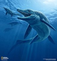 The giant ichthyosaur ruled the oceans some 244 million years ago. Here&#39;s what it may have looked like seizing a meaty snack.